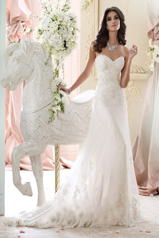 David Tutera 215267 Nala Dress Tulle Beaded Bodice A-line Silhouette