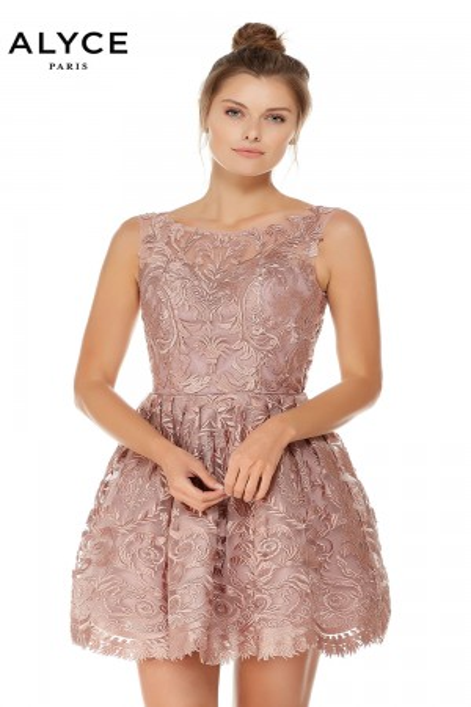 Alyce Paris - Dress Style 3761