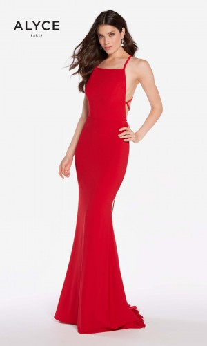 Alyce Paris 60001 Fitted Long Party Dress