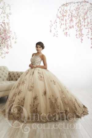 2a8ee3af1 House of Wu 26884 Illusion Back Quinceanera Dress
