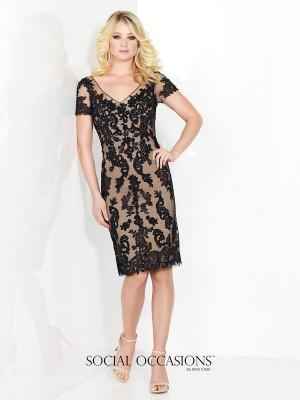 Social Occasions 215821 Dress Tulle Lace Illusion V-Neck Short Sleeve Fitted Sheath